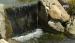 Firestone allaskumi, leveys 6.10 m